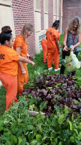Female prisoners tend a garden